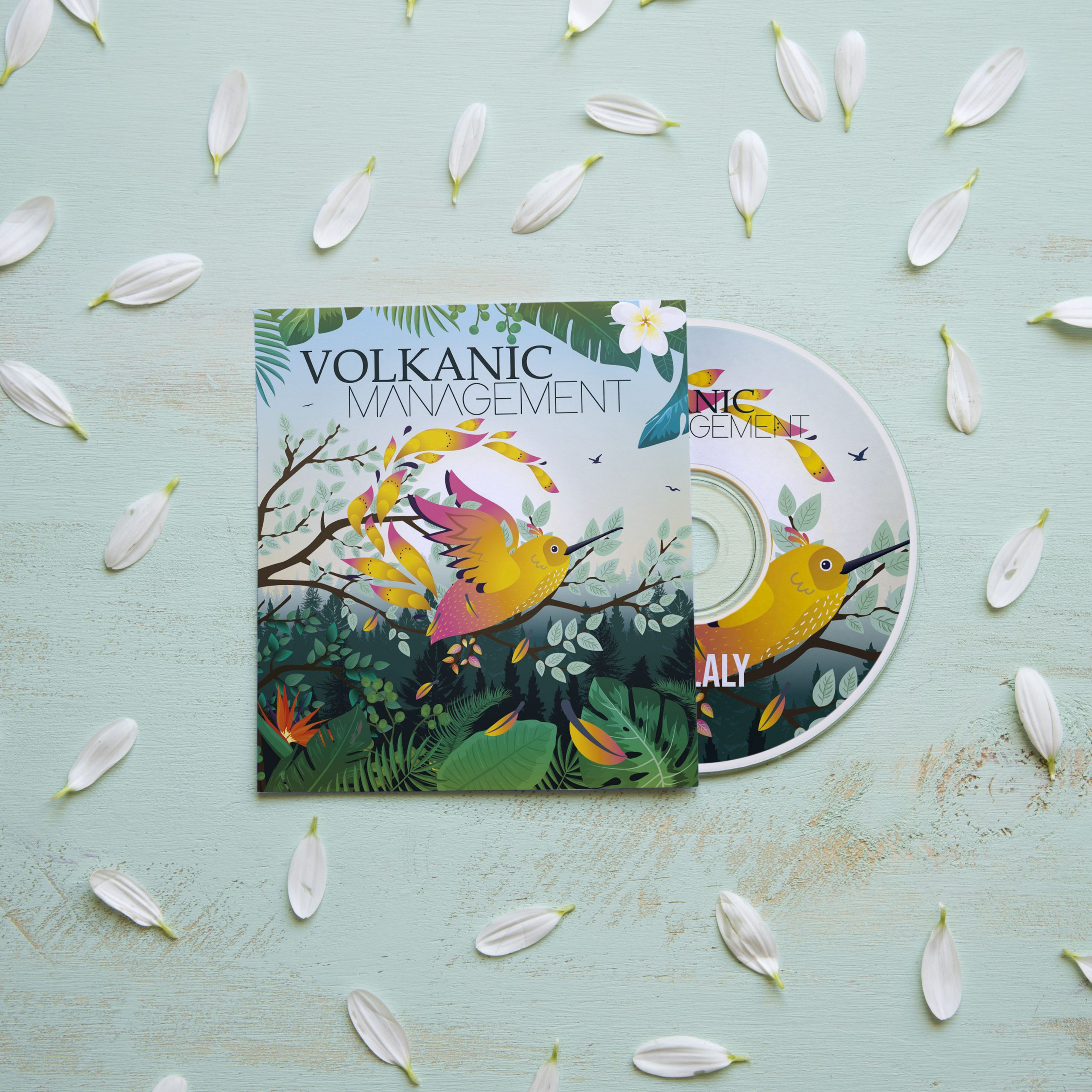 "Album Cover ""Volkanic Management"""